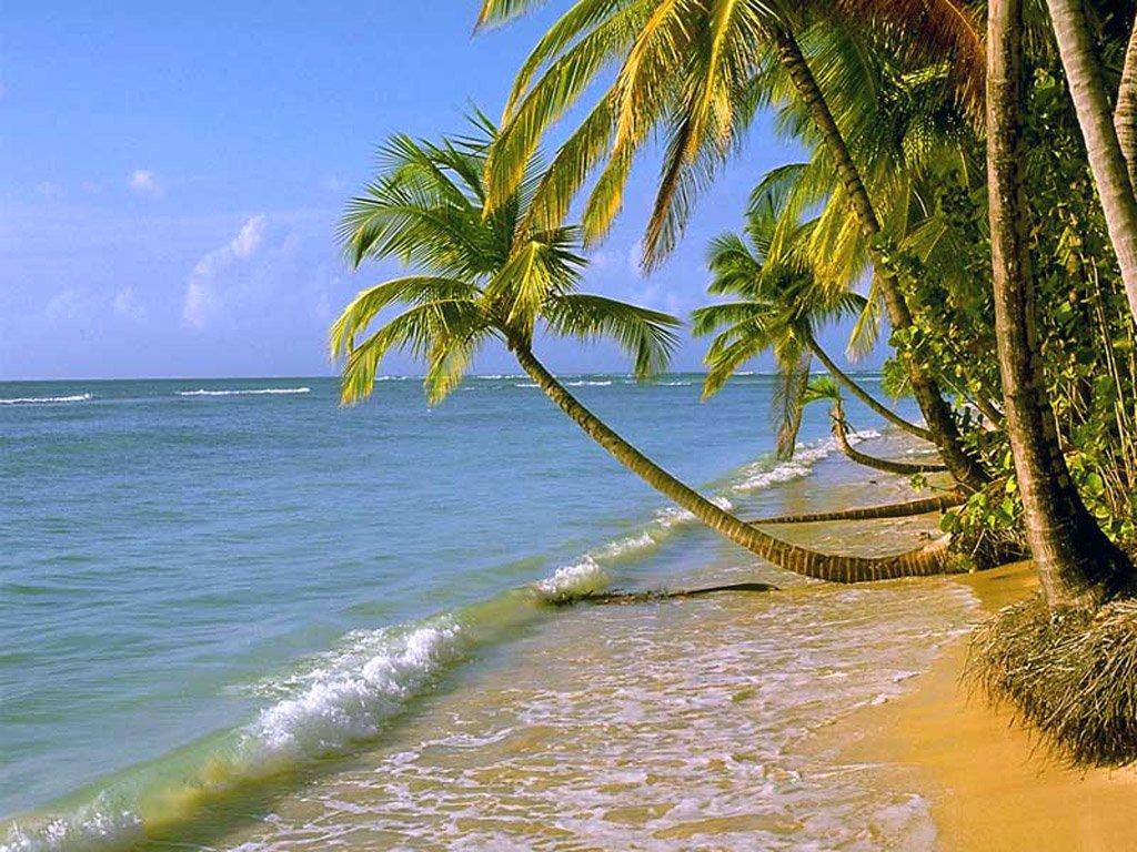Sfondi per desktop mare spiagge onde for Foto mare per desktop